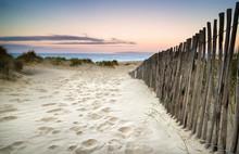 Grassy dunes de sable au lever du soleil