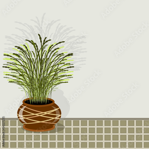 Grass in the pot.