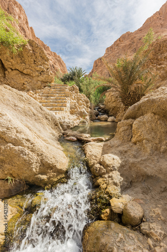 mountain oasis Chebika in Sahara desert, Tunisia - 54231211