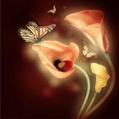 Multi-colored lilies and the butterfly on a dark background