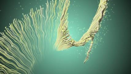 Organic sperm like matter.