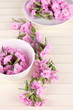 Many small pink cloves in cup and on saucer on wooden