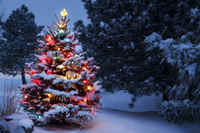 "Постер, картина, фотообои ""Brightly Lit Snow Covered Holiday Christmas Tree Winter Storm"""