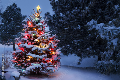 Keuken foto achterwand Bossen Brightly Lit Snow Covered Holiday Christmas Tree Winter Storm