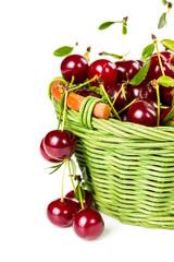 Ripe cherries in wicker basket