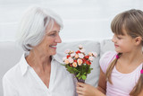 Cute girl giving a bunch of flowers to her grandmother