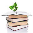 Books with plant isolated on white