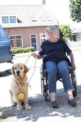 Guide dog won a golden medal