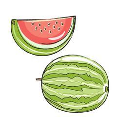 Bleistiftzeichnung: Wassermelone, situativ