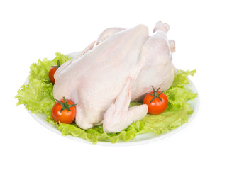 Raw crude chicken on a plate garnished with vegetables
