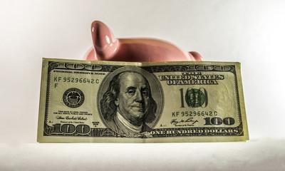 Piggy dollar