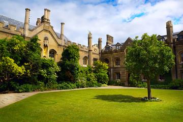 Art Cambridge University College
