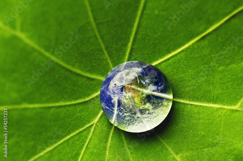 The world in a drop of water
