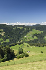 Rural Landscape in South Tyrol (Bolzano)