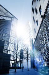 office buildings sunlight
