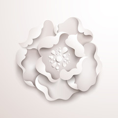 Abstract floral background. White paper flower