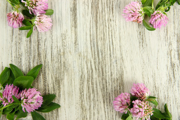Clover flowers on wooden background
