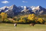 Fototapety Dallas Divide, Uncompahgre National Forest, Colorado