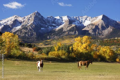 Foto op Plexiglas Landschappen Dallas Divide, Uncompahgre National Forest, Colorado