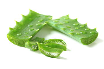 Aloe leaves with drops, isolated on white