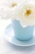 Flower rose in a light blue vase