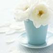 White rose on shabby chic vintage background