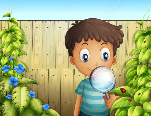 A boy holding a magnifying glass to see the bugs