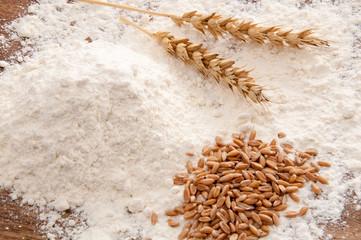 Weizen - Mehl, Körner und Ähren