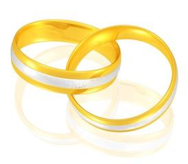 Eheringe in Gold/Weißgold