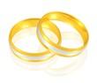 Eheringe - Gold/Weißgold