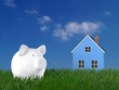 Piggy bank - lawn with blue house