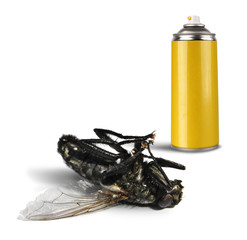 Insecticide spray bottle with dead fly