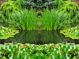 Green garden landscape