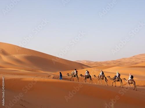 Fototapeten,sahara,sahara,sand,morocco