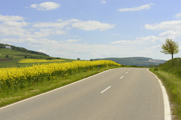 hilly road in Baden country, Geisingen