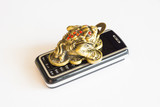frog figurine with phone