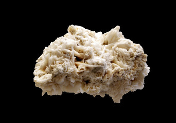 Crystal of Gypsum