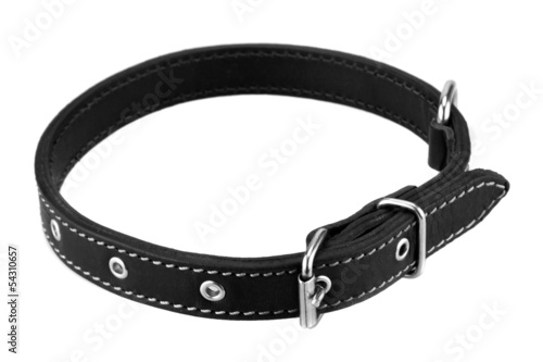 Foto op Canvas Dragen black leather dog collar