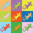 Farbiger Gecko