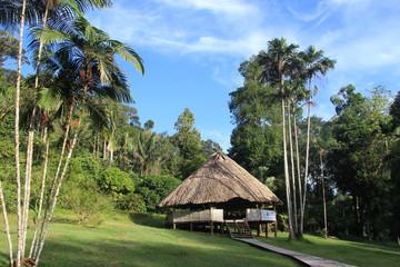 Guyane - Descente de l'Approuague 2013