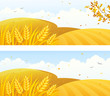 Autumn crop banners