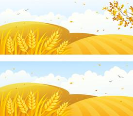 Autumn crop banners