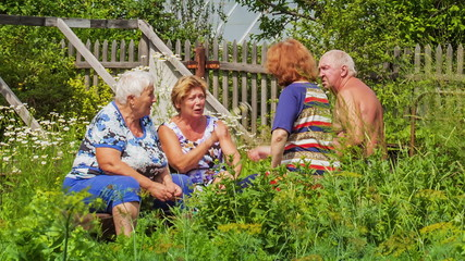 Older people are, group talking in the open air
