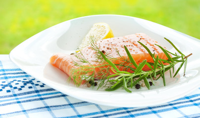Fresh salmon with lemon, rosemary and dill on white plate