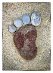 Fuß mit vier Zehen aus Steinen