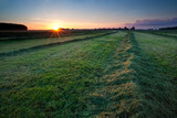 clipped hay on field at sunrise