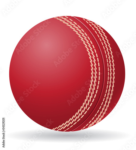 criket ball vector illustration