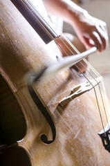 Detail of playing cello