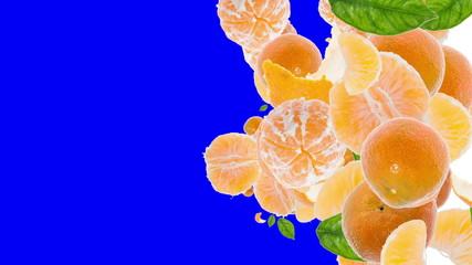 Falling Tangerines (with Alpha Channel)