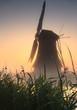 Windmill & reed